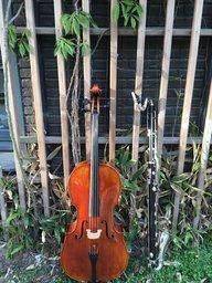 Het Westerkamerorkest